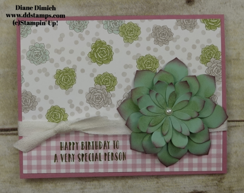 Stampin' Up! Oh so Succulent