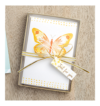 Stampin' Up! Watercolor Wings note cards