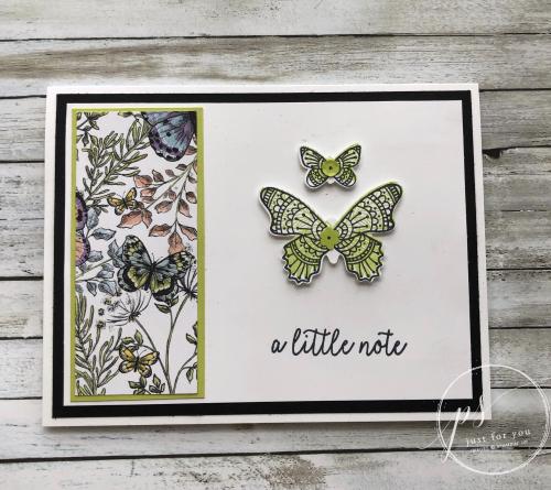 Butterfly gala a little note