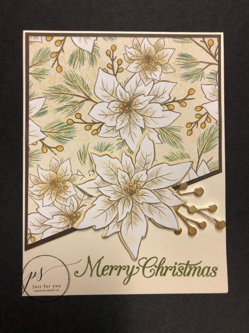 Poinsettia Petals Christmas