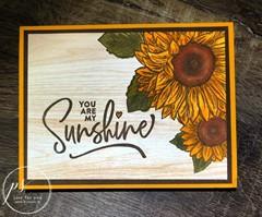 Celebrate Sun Flowers
