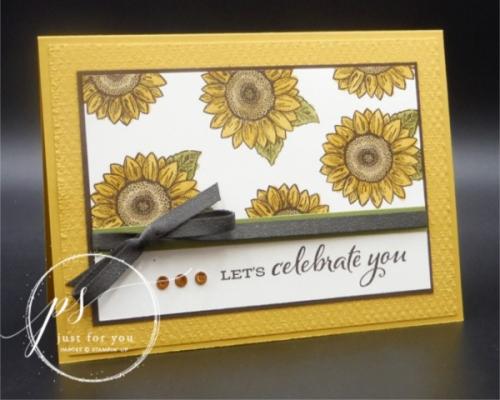 Celebrate sunflowers 3