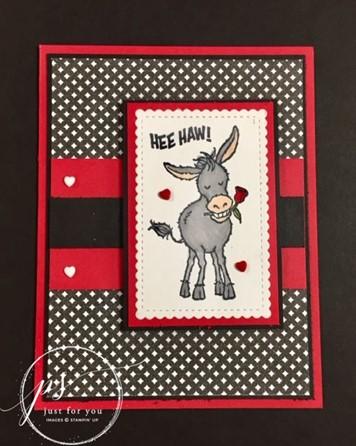 Darling donkeys true love