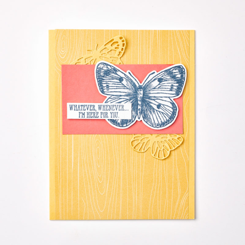 Butterfly Brilliance-Bundle_Individual-Sample_2