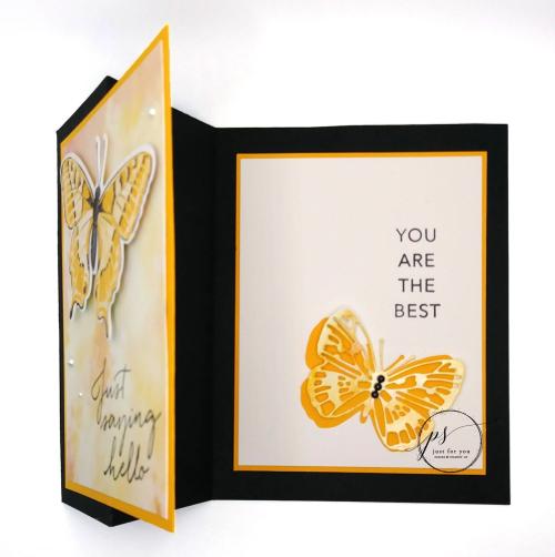 Butterfly Brilliance (1) open